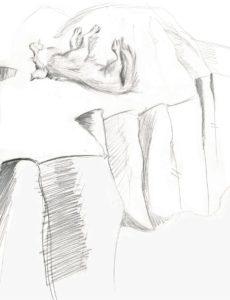 Sammy life-drawing